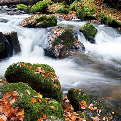 Photograph - Golitha Falls  by Helen Northcott