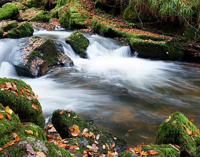 Photograph - Golitha Falls II by Helen Northcott