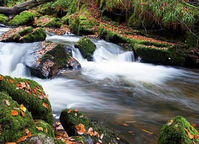 Photograph - Golitha Falls IIi by Helen Northcott