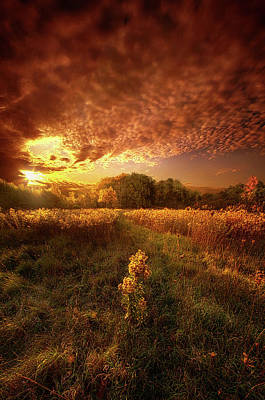 Photograph - Gone Far Away Into The Silent Land by Phil Koch