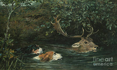 Deer Hunting Painting - Gone To Water by John Emms