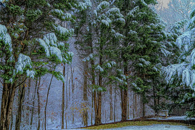 Photograph - Gonna Be A Snowy Day by Dennis Baswell