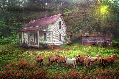 Photograph - Good Country Morning by Debra and Dave Vanderlaan