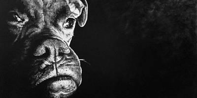 Painting - Good Dog by Scott Robinson
