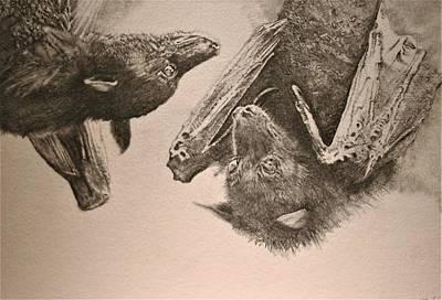 Good Evening- Fruit Bats Original