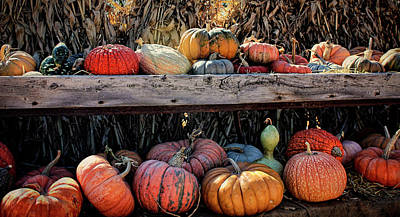Photograph - Good Harvest by Ellen Heaverlo