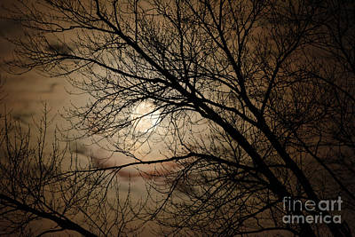 Photograph - Good Moon Rising by Charles Owens