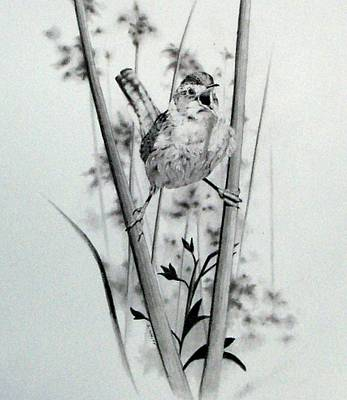 Meadowlark Drawing - Good Mornin by Stan White