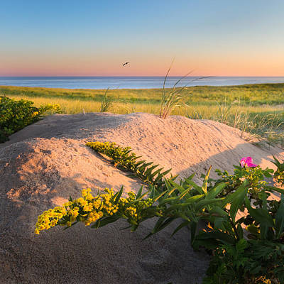 Photograph - Good Morning Cape Cod by Bill Wakeley