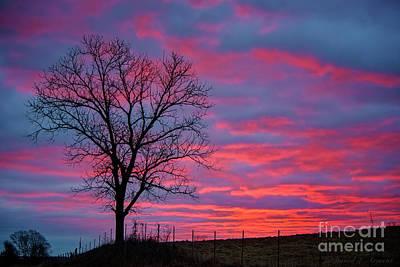 Photograph - Good Morning Indiana by David Arment