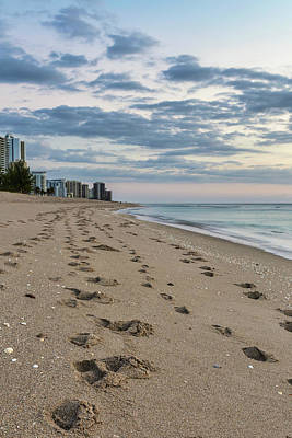 Photograph - Good Morning Miami Beach by Penny Meyers