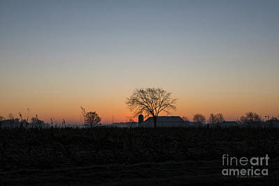 Photograph - Good Morning On The Farm by David Arment