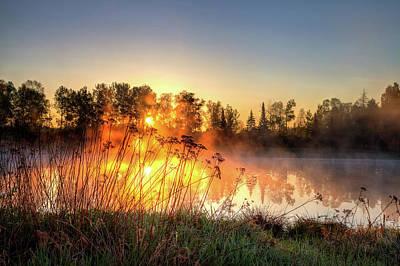 Photograph - Good Morning Sunshine by Brian Boudreau