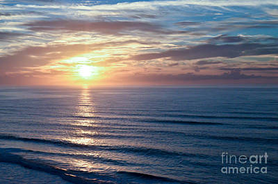 Photograph - Good Morning Sunshine by Kerri Farley