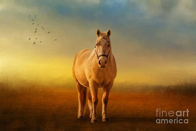 Palomino Horse Photograph - Good Morning Sweetheart by Lois Bryan