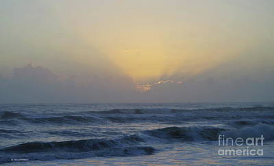 Photograph - Good Morning by Tannis Baldwin