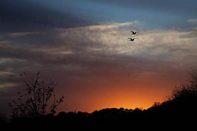 Photograph - Good Night by Jennifer Karon