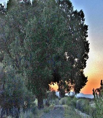 Photograph - Good Night by Marilyn Diaz