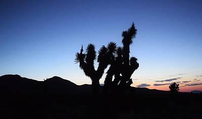 Photograph - Goodspring Sunrise by John Glass