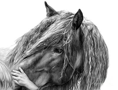 Equine Drawing Drawing - Goodwill And Harmony by Sheona Hamilton-Grant