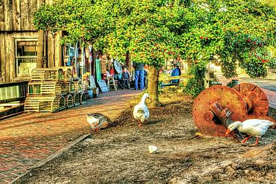 Goose At The Country Store Art Print by Geraldine Scull