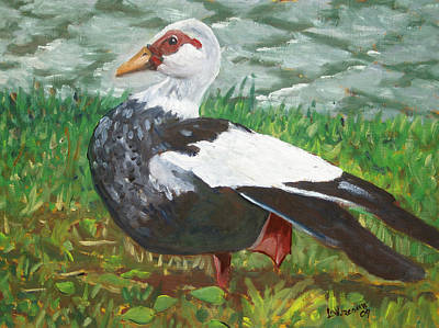 Painting - Goose by D T LaVercombe