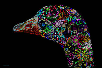 Photograph - Goose Down Neon by Lesa Fine