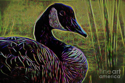Photograph - Goose In Fractal by Patti Whitten