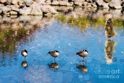 Photograph - Goose Patrol - V1 by Les Palenik