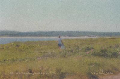 Gooseberry Island Westport Ma Art Print