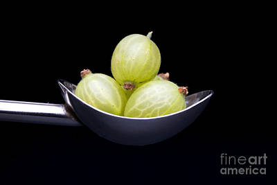 Gooseberry Spoon Art Print