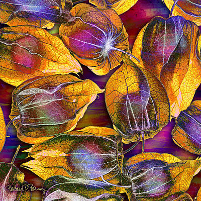 Digital Art - Goosed Berry Pods by Barbara Berney