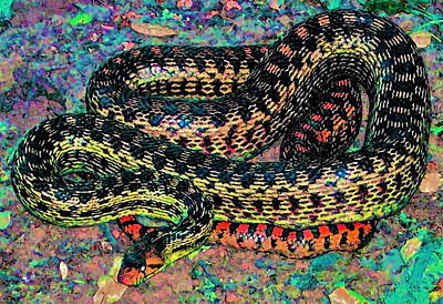 Gopher Snake Print by Pamela Cooper
