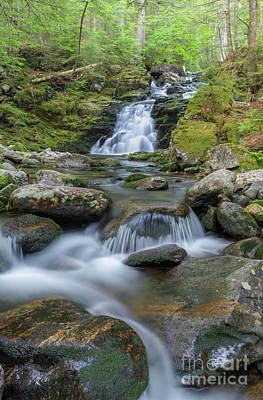 Photograph - Gordon Falls - Randolph New Hampshire  by Erin Paul Donovan