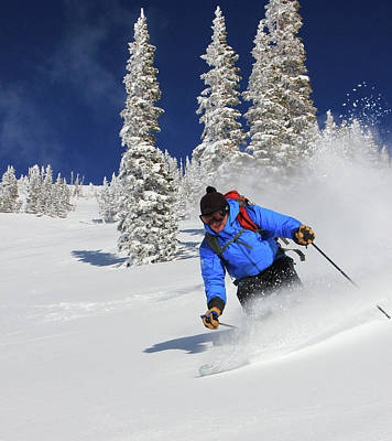 Photograph - Gordy In The Powder by Johnny Adolphson