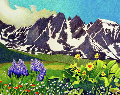 Drawing - Gore Range Wildflowers by Dan Miller