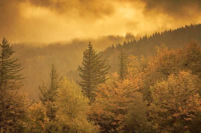 Photograph - Gorge Colors by Don Schwartz