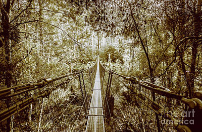 Photograph - Gorge Swinging Bridges by Jorgo Photography - Wall Art Gallery