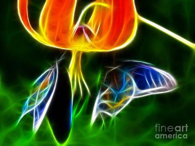 Gorgeous Butterflies Art Print by Pamela Johnson