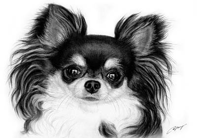 Chihuahua Painting - Gorgeous by Danguole Serstinskaja