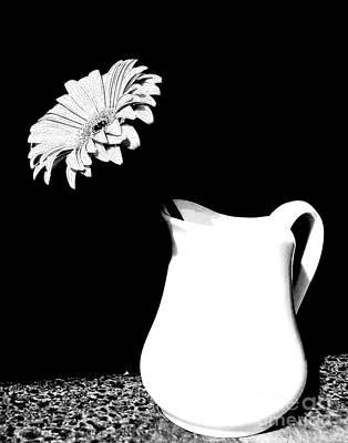 Pouring Digital Art - Gorgeous Gabbi In Black And White by Marsha Heiken