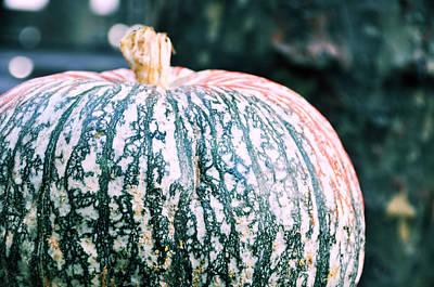 Gorgeous Gourd Art Print by JAMART Photography