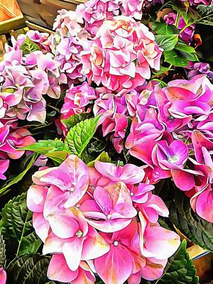 Photograph - Gorgeous Hydrangeas 2 by Dorothy Berry-Lound