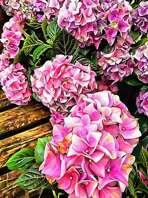 Photograph - Gorgeous Hydrangeas 3 by Dorothy Berry-Lound