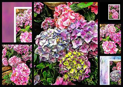 Digital Art - Gorgeous Hydrangeas Collage 1 by Dorothy Berry-Lound