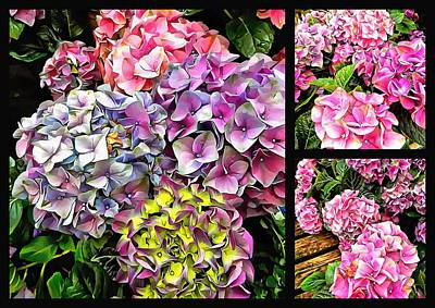 Digital Art - Gorgeous Hydrangeas Collage 2 by Dorothy Berry-Lound