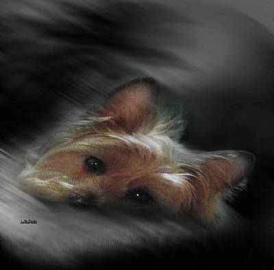 Digital Art - Gorgeous Joy Portrait 4 by Miss Pet Sitter