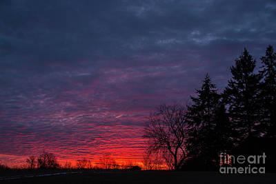 Photograph - Gorgeous Morning Landscape by Cheryl Baxter