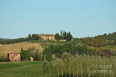 Gorgeous Vineyard In Tuscany Italy Art Print by DejaVu Designs