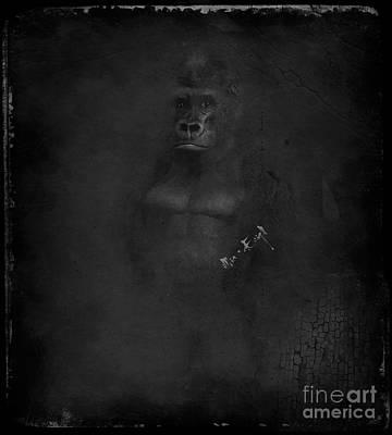 Stellar Interstellar - Gorilla by Mia Stedt